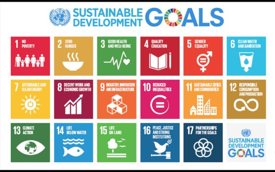 The Sustainable Development Goals, adopted on 25 September 2015 as a part of the 2030 Agenda.